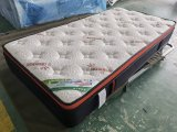 Paris III - Euro Pillow Top Twin Mattress in a Box